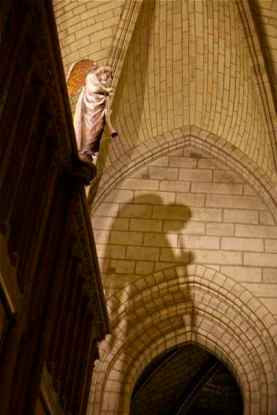 notre-dame_paris-france_angel-and-shadow_img_5097