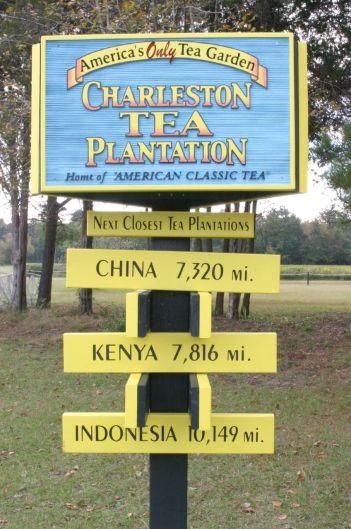 Charlestonteasign